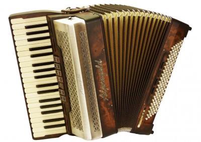 Akkordeon Alpengold Krainer IV M - Volksmusik